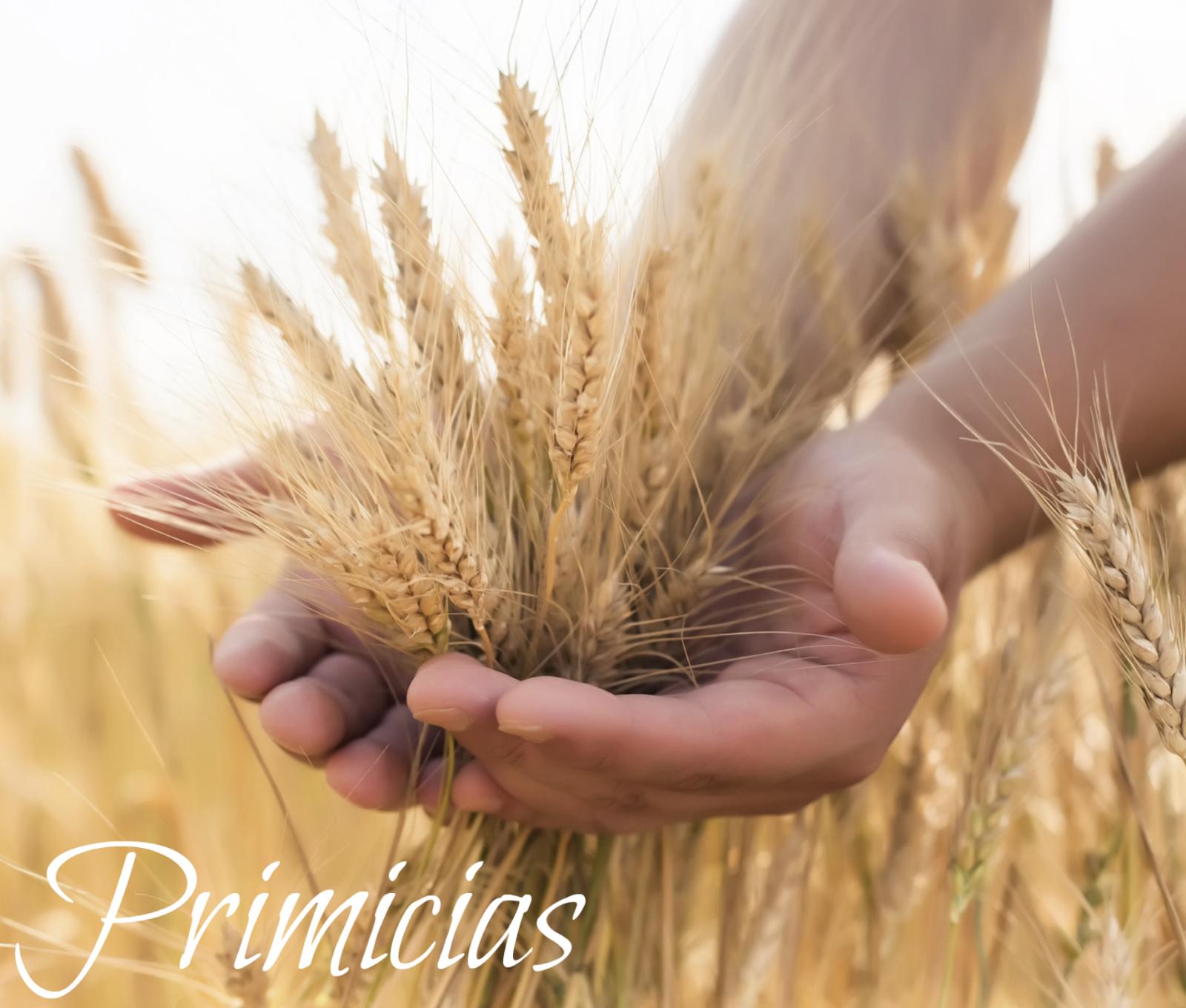Cita Divina: Esencia de PRIMICIAS